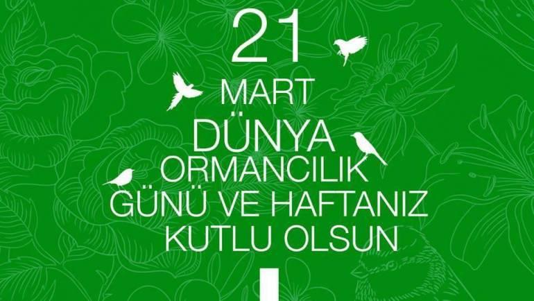 21 Mart Dünya Ormancılık Günü ve Haftası